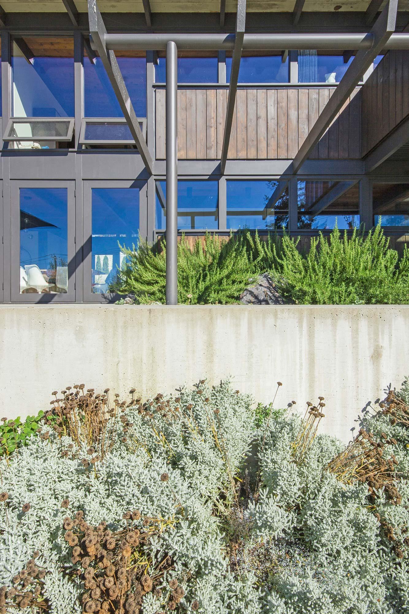 Marine Drive | Botanica Design